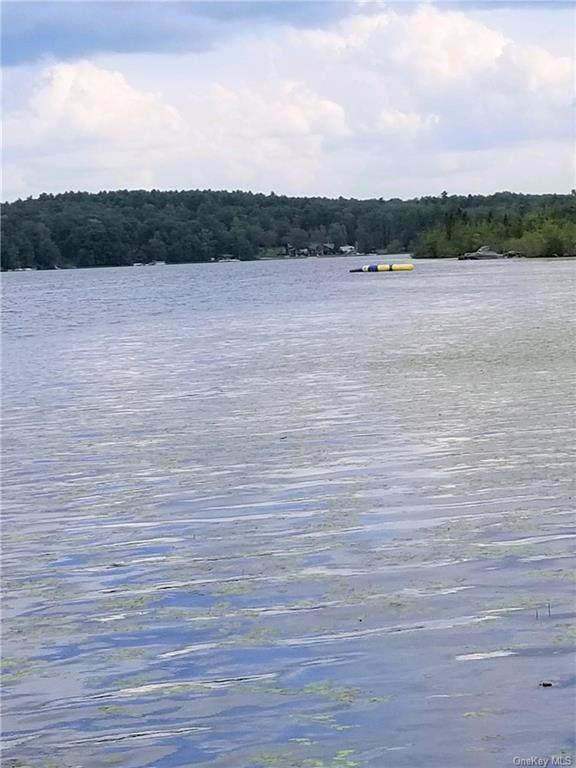 Lakeview Drive Road, Highland Lake, NY 12743 (MLS #H6150870) :: Carollo Real Estate