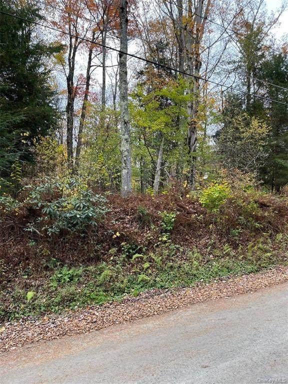 Park Drive, Parksville, NY 12768 (MLS #H6150973) :: Cronin & Company Real Estate