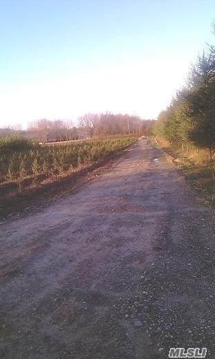 Longwood Road - Photo 1