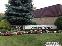 200 Hilton Ave #44, Hempstead, NY 11550 (MLS #3279889) :: Nicole Burke, MBA | Charles Rutenberg Realty