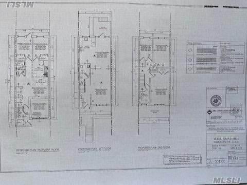 16 E 58, Brooklyn, NY 11203 (MLS #3281580) :: Cronin & Company Real Estate