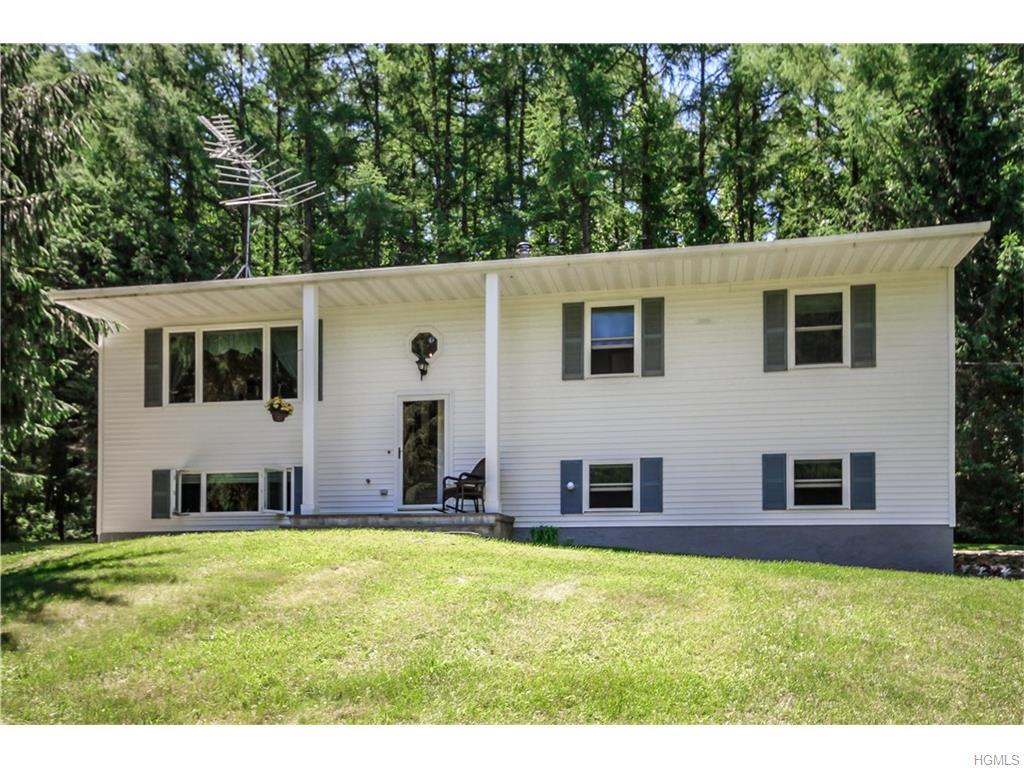 191 Downing Road, Pleasant Valley, NY 12569 (MLS #4627118) :: William Raveis Legends Realty Group