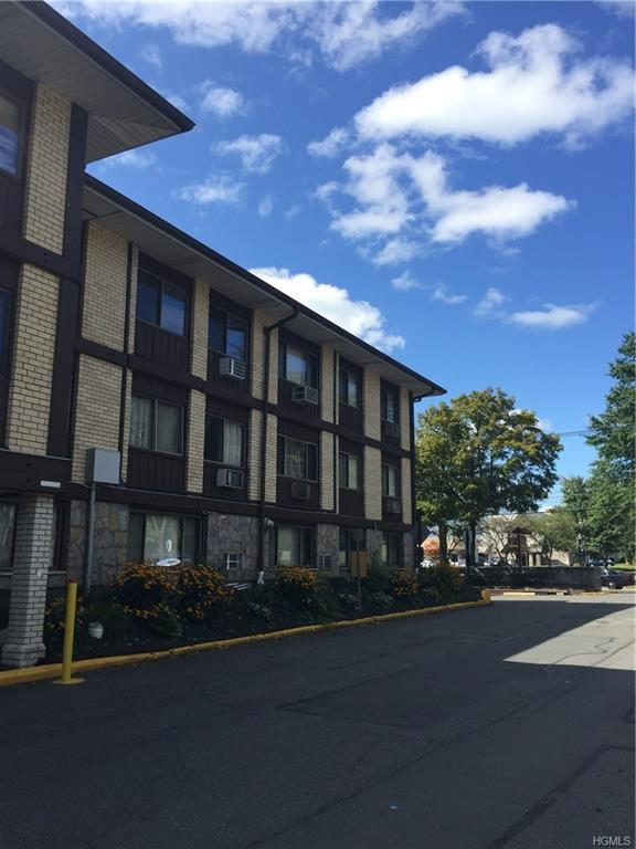 254 N Main Street E28, Spring Valley, NY 10977 (MLS #4741501) :: William Raveis Legends Realty Group