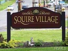 24 Manuche Drive #1, New Windsor, NY 12553 (MLS #4746400) :: Mark Seiden Real Estate Team