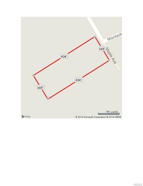 Maple Avenue, Monroe, NY 10950 (MLS #4816070) :: Mark Boyland Real Estate Team