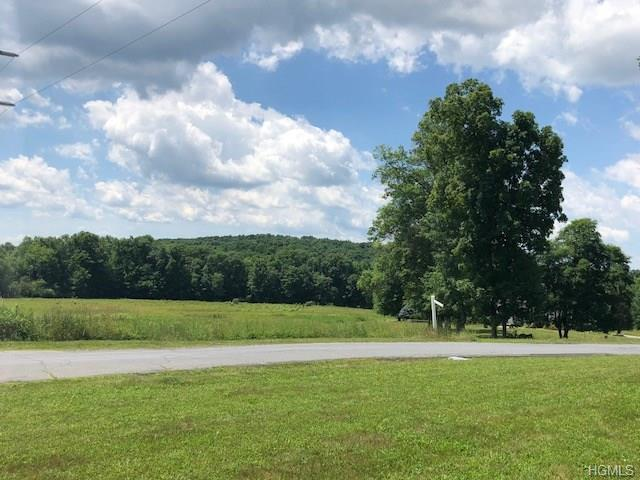 32 Fox Hollow Drive, Blooming Grove, NY 10914 (MLS #4830323) :: William Raveis Baer & McIntosh