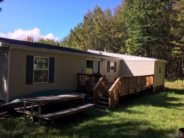 25 Mac Dougall Road, Roscoe, NY 12776 (MLS #4841072) :: Mark Boyland Real Estate Team