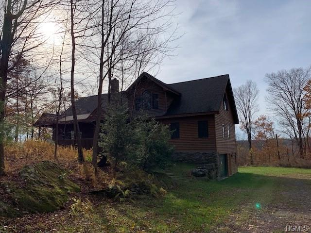 162 Meyers Road, Livingston Manor, NY 12758 (MLS #4847856) :: William Raveis Legends Realty Group