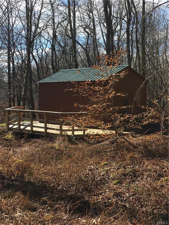 Terwilliger Road, Livingston Manor, NY 12758 (MLS #4852008) :: Mark Seiden Real Estate Team