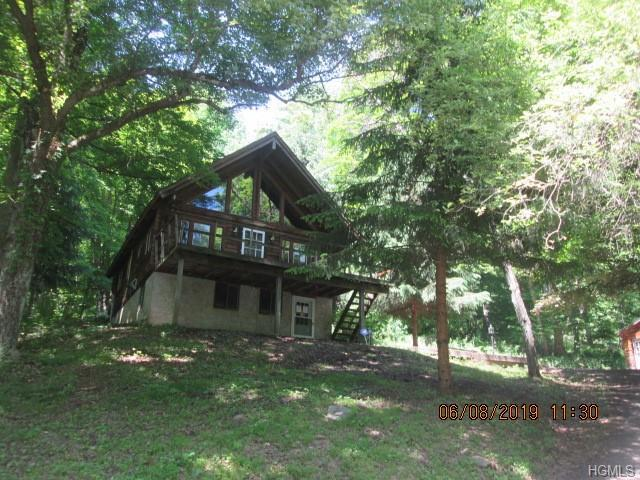 220 Cabin Road, East Branch, NY 13756 (MLS #4948625) :: William Raveis Legends Realty Group