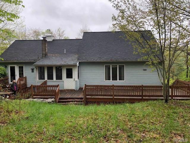 6399 Nys Route 97, Narrowsburg, NY 12764 (MLS #5067052) :: Mark Seiden Real Estate Team