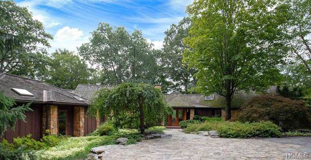 1071 Route 343, Millbrook, NY 12522 (MLS #5118795) :: The Anthony G Team