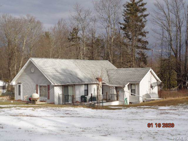 332 Southwoods Drive, Monticello, NY 12701 (MLS #6003150) :: The McGovern Caplicki Team