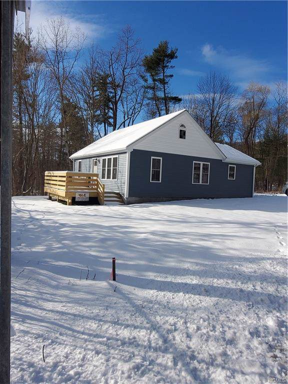 75 State Route 55, Napanoch, NY 12458 (MLS #6005772) :: William Raveis Baer & McIntosh