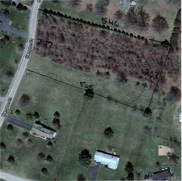 Hampton Court, Wallkill, NY 12589 (MLS #6019648) :: William Raveis Baer & McIntosh