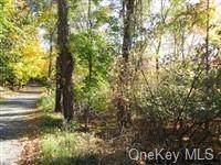 10 Ivy Rock Road - Photo 1