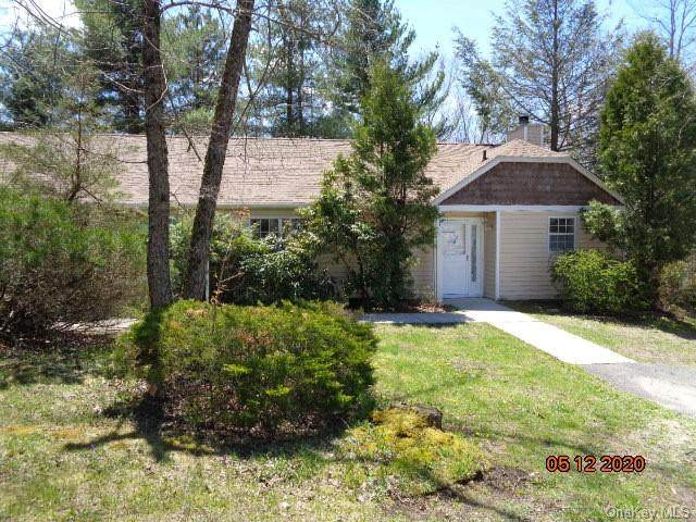 109 Hidden Ridge Drive, Thompson, NY 12701 (MLS #H6038876) :: Cronin & Company Real Estate