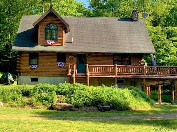 116 Cty Hwy 96, Fremont, NY 12736 (MLS #H6042097) :: RE/MAX Edge