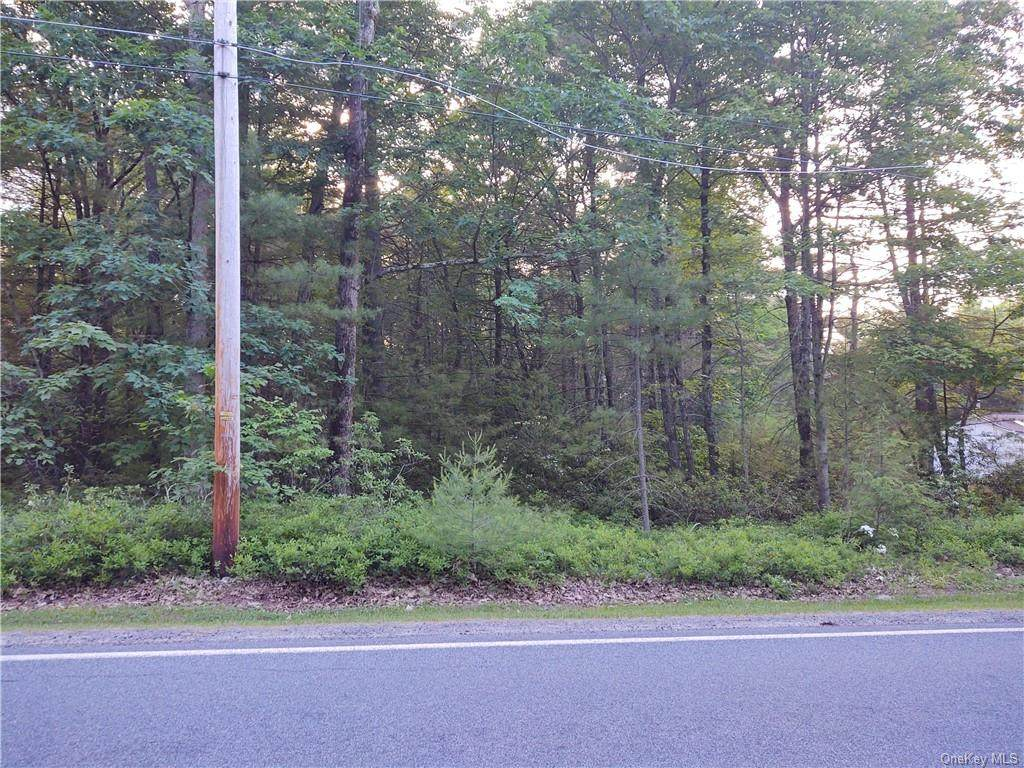 Forestburgh Road - Photo 1
