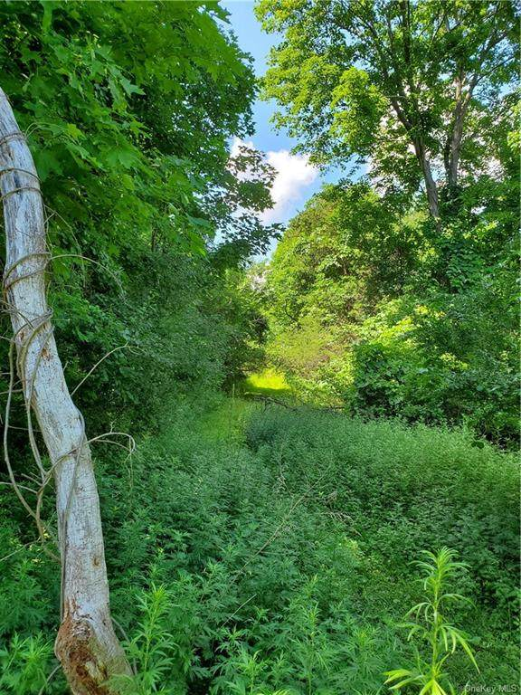 2 Magnum Trail, Warwick Town, NY 10990 (MLS #H6050643) :: William Raveis Legends Realty Group