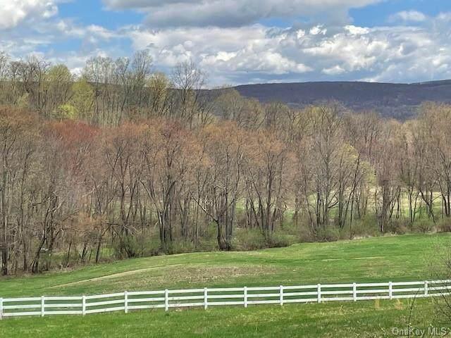 0 Woods Drive, Ancram, NY 12502 (MLS #H6057134) :: Signature Premier Properties