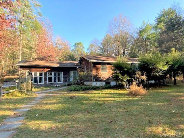 360 State Route 55, Barryville, NY 12719 (MLS #H6077497) :: Nicole Burke, MBA | Charles Rutenberg Realty