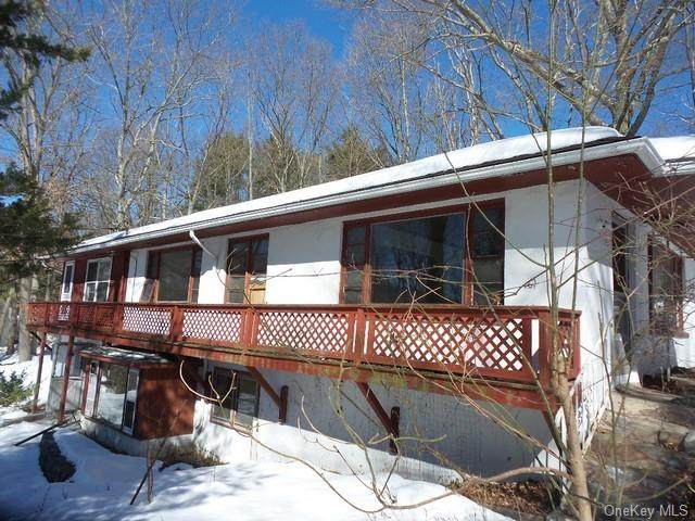 60 Lake Street, Greenwood Lake, NY 10925 (MLS #H6095939) :: McAteer & Will Estates | Keller Williams Real Estate