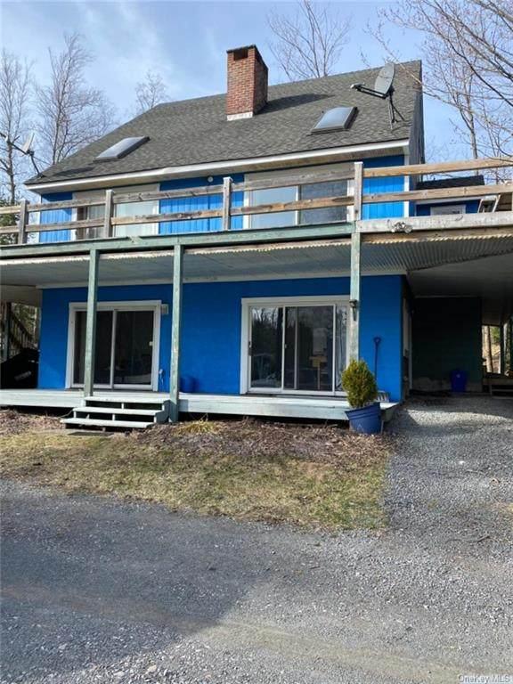 76 Raspberry Lane, Tannersville, NY 12485 (MLS #H6106034) :: McAteer & Will Estates | Keller Williams Real Estate