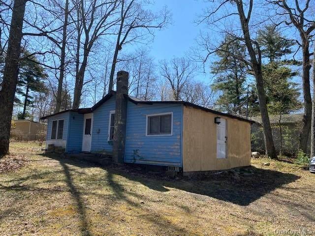 50 Cedar Road, Wurtsboro, NY 12790 (MLS #H6109498) :: Signature Premier Properties