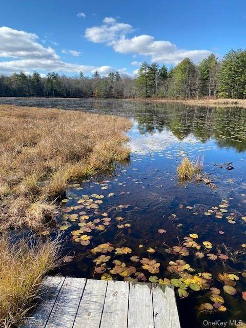 (40.-1-92.2) Deer Meadow, Bethel, NY 12720 (MLS #H6113069) :: Mark Boyland Real Estate Team