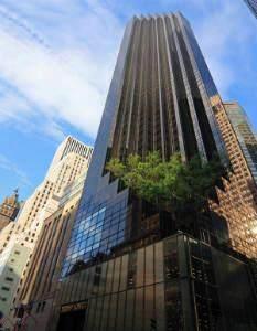 721 Fifth Avenue 62-M, Newyork, NY 10022 (MLS #H6113911) :: Signature Premier Properties