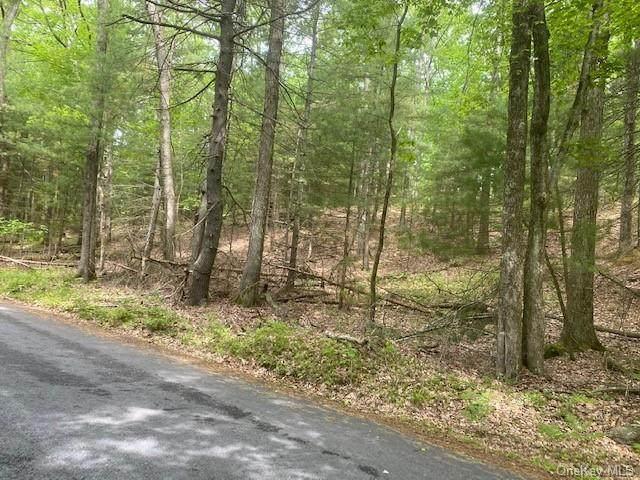 Birch Drive, Shohola, PA 18458 (MLS #H6115843) :: Cronin & Company Real Estate