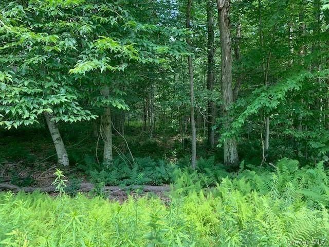 Lakeside Wood Road, Fremont Center, NY 12736 (MLS #H6131394) :: Howard Hanna Rand Realty