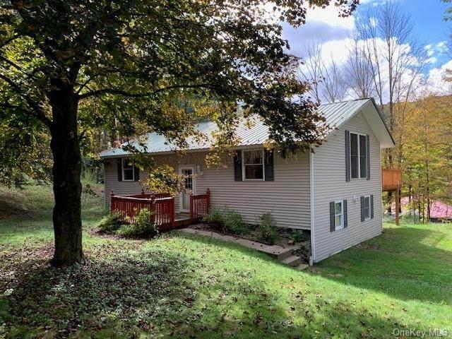 312 Main Street, Grahamsville, NY 12740 (MLS #H6139918) :: Cronin & Company Real Estate