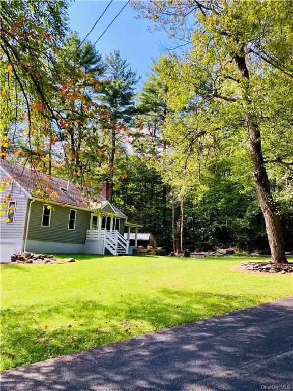 121 Weiser Road, Ellenville, NY 12428 (MLS #H6142283) :: Cronin & Company Real Estate