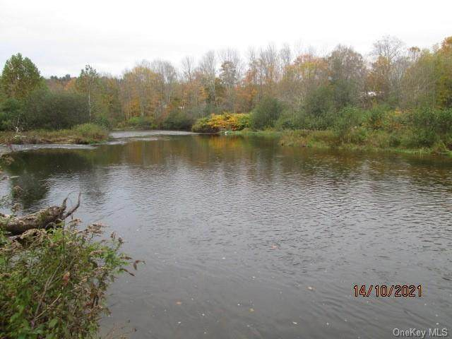 Sunrise Park, Fallsburg, NY 12733 (MLS #H6150142) :: Cronin & Company Real Estate