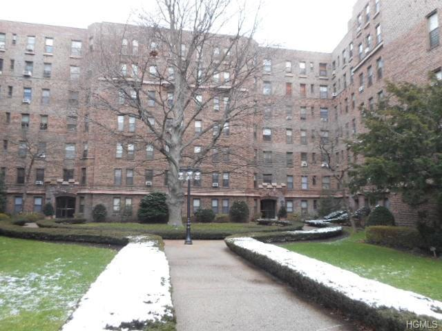 531 E Lincoln Avenue 3A, Mount Vernon, NY 10552 (MLS #4605673) :: William Raveis Baer & McIntosh