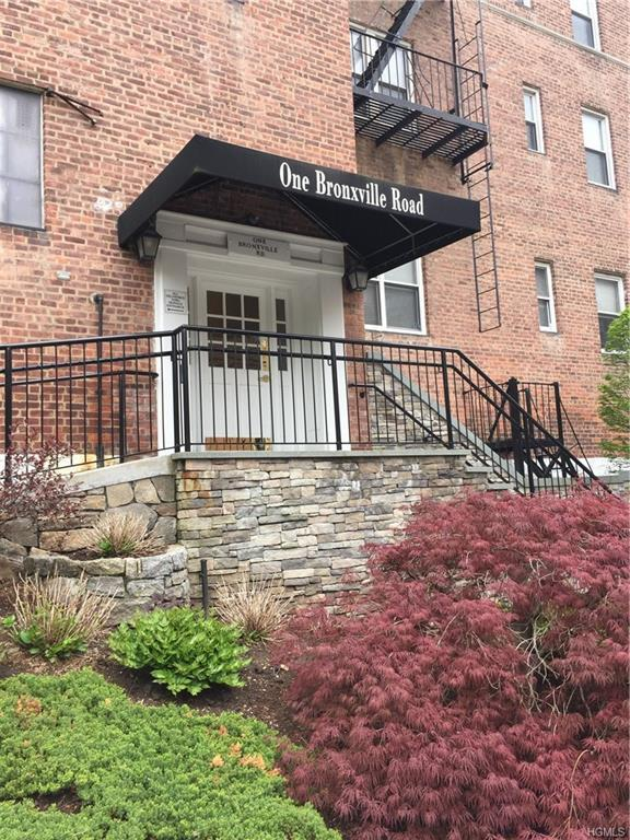 1 Bronxville Road 1-O, Bronxville, NY 10708 (MLS #4929309) :: William Raveis Legends Realty Group