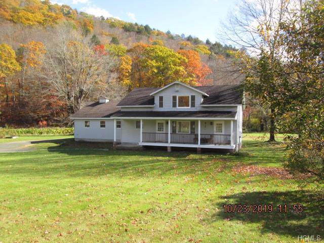 20871 Old Route 17, Roscoe, NY 12776 (MLS #5060201) :: The Anthony G Team