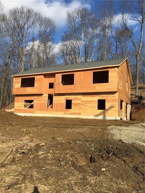 141 Johnson Road, Wingdale, NY 12594 (MLS #5096328) :: Mark Boyland Real Estate Team
