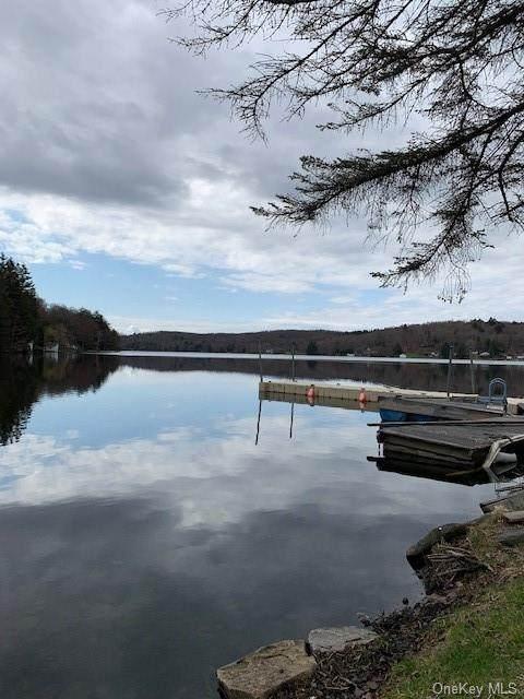 Tennanah Lake Road - Photo 1