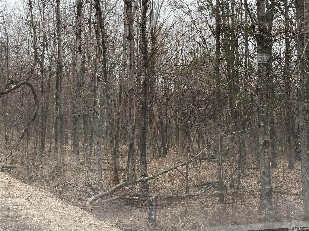 Ed Klug Road - Photo 1
