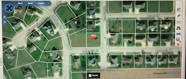 0 Magnolia, GREENVILLE, OH 45331 (MLS #416025) :: Superior PLUS Realtors