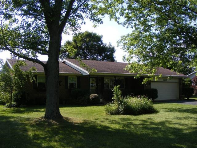 3675 Folk Ream, Springfield, OH 45502 (MLS #428933) :: Superior PLUS Realtors