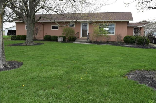 1899 State Route 707, ROCKFORD, OH 45882 (MLS #426044) :: Superior PLUS Realtors