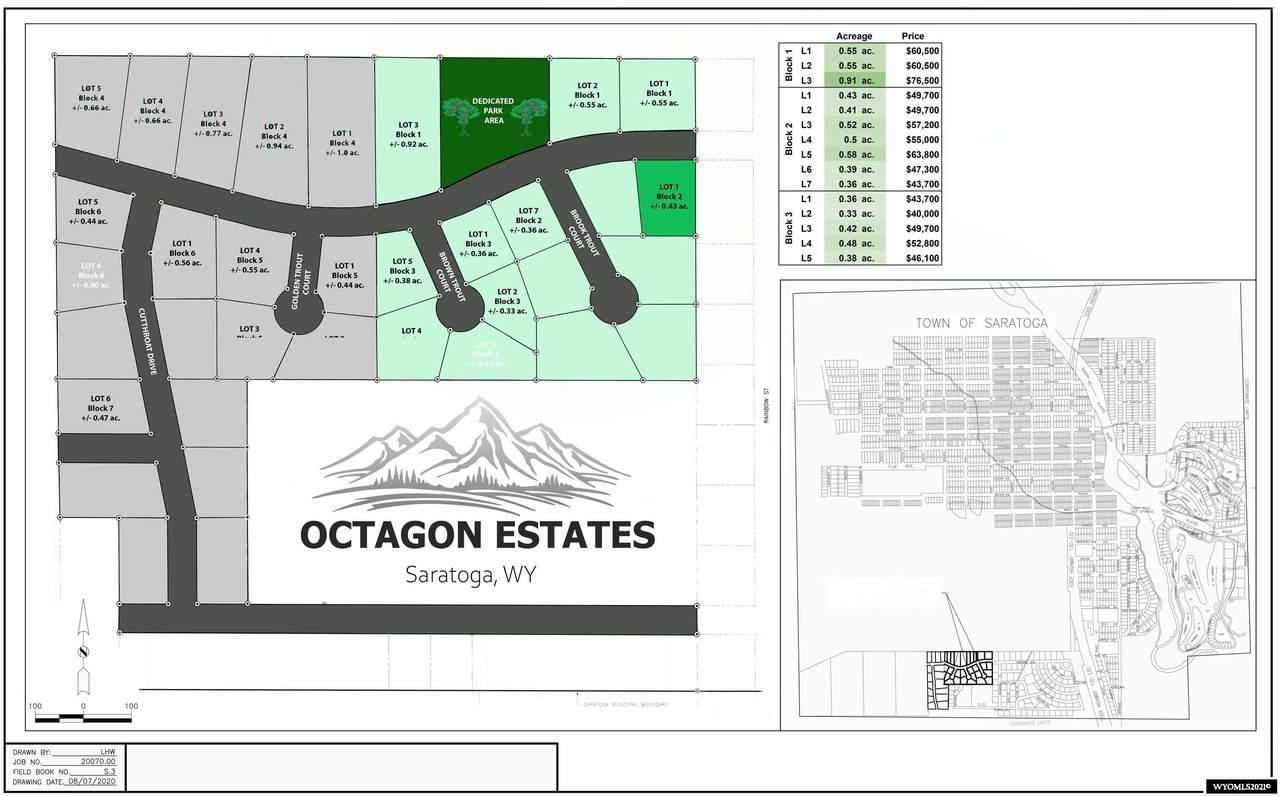 Lot 1 Block 2 Octagon Estates First Addition - Photo 1