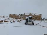 3691 Timber Wolf Court - Photo 1