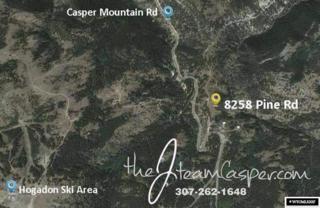 8258 Pine Road, Casper, WY 82601 (MLS #20172568) :: RE/MAX The Group