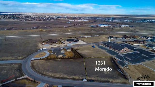 1231 Morado, Casper, WY 82609 (MLS #20181415) :: RE/MAX The Group