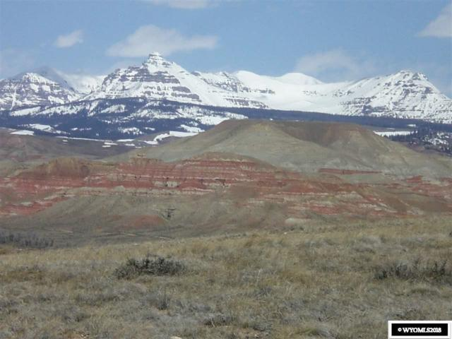 000 Mountain View Drive Drive, Dubois, WY 82513 (MLS #20182118) :: Real Estate Leaders